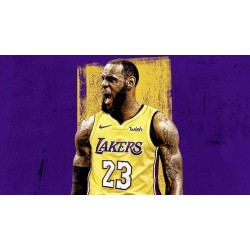 Lebron James Laker Jersey
